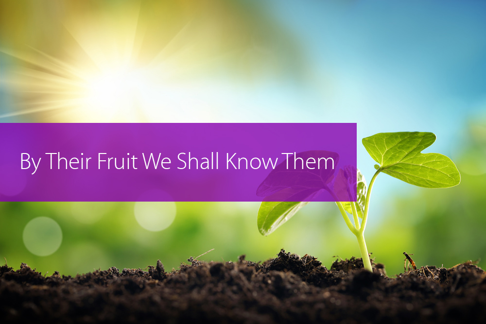 Thumbnail image for By Their Fruit We Shall Know Them